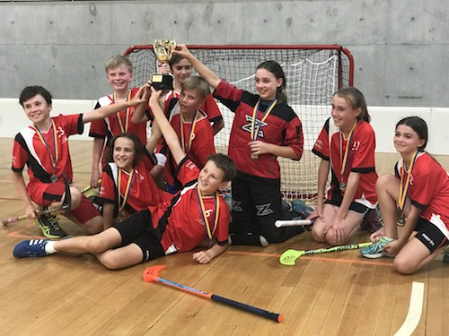 Floorball NSW Series